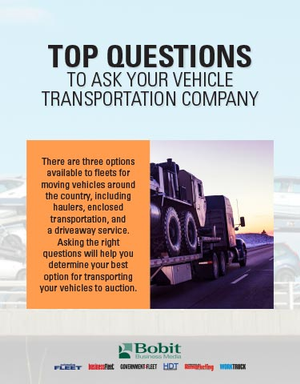 Top Questions to Ask Your Vehicle Transportation Company