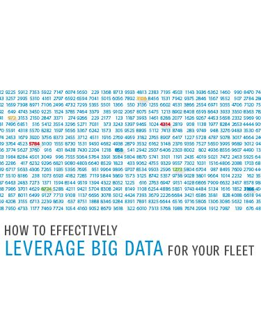 Big Data for Fleet Managers