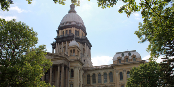 In September, Illinois Gov. Bruce Rauner issued an amendatory veto of SB 2641 and returned the...
