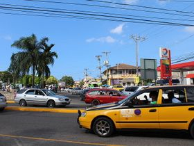 Jamaican Hourly Car Rental Company Plans to Expand