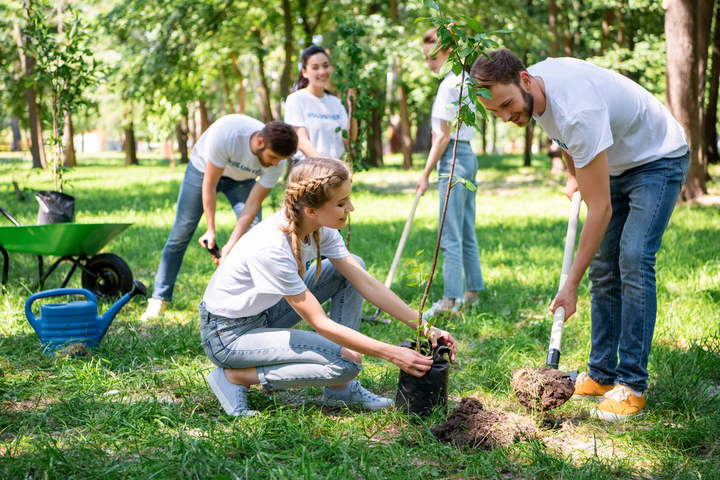 The Enterprise Urban Tree Initiative invests in cities that have been devastated by hurricanes, tornadoes, wildfires, floods, hailstorms, and other natural disasters. - Photo via Depositphotos.
