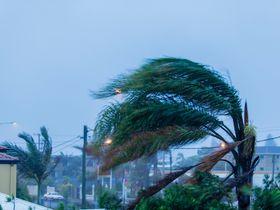 Uber, Lyft Offer Free Rides to Florida Hurricane Shelters
