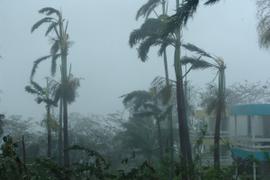 Car Rental Stocks Rise As Hurricane Florence Makes Landfall