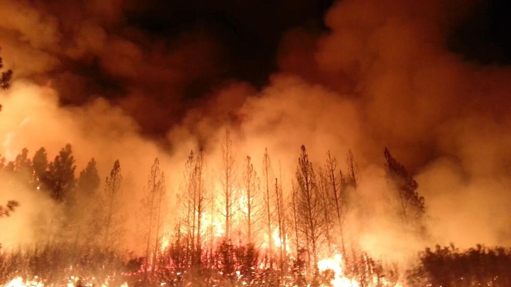 Deadly wildfires in Greece, which have been burning since Monday, have so far left 85 people dead, according to The Guardian.  - Photo via U.S. Department of Agriculture/Wikimedia.
