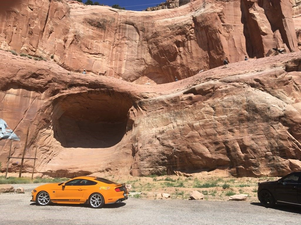 Team Shelby plans to host Wood for a party with a Sixt car during the Hot Wheels convention in...