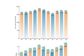 2006 Car Rental Revenue