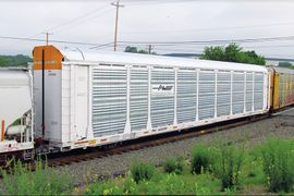 Fewer Railcar Constraints but Transporter OTD Issues Persist
