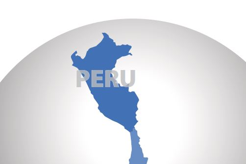 Market Snapshot: Peru Automotive and Fleet Market