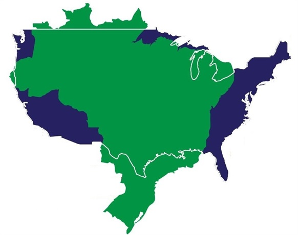 Illustration of geographic outline of Brazil superimposed on geographic outline of the U.S. courtesy of istockphoto.com