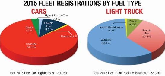 Datatcourtesy of Canadian Automotive Fleet