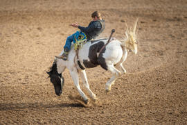 Time in the Saddle Is the Secret to Becoming a Great Fleet Manager