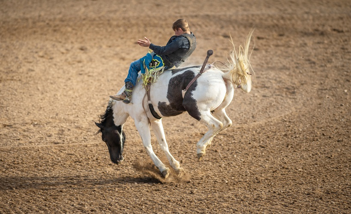 "The development of subject-matter expertise and career longevity are interrelated and symbiotic. If you want to be a great at your job, you need ""time in the saddle."" - Photo credit: ©istockphoto.com/THEPALMER"