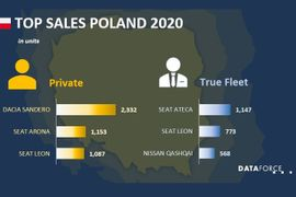 Poland Fleet Sales Down in January