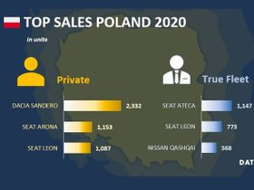 Poland Fleet Sales Down in January