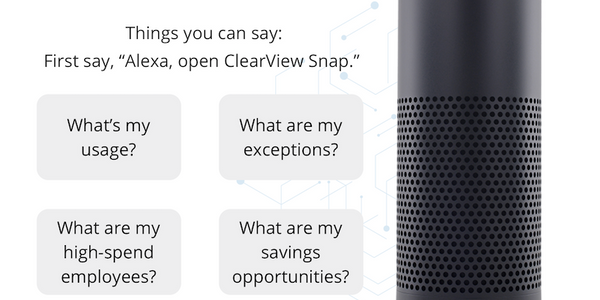 The integration with data analytics platform ClearView Snap will now allow customers to access...