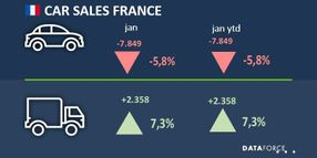 French Fleet Registrations Up in January