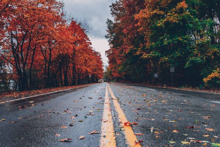 According to the analysis, Mississippi is the most dangerous state to drive in during fall where the fatality rate is 4.52 accidents per 100,000 residents. - Photo: pexels.com/Craig Adderley.