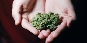 Survey: 33% of Employees Witness Cannabis Use on the Job