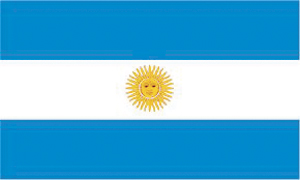 Overview: Argentinian Fleet Market