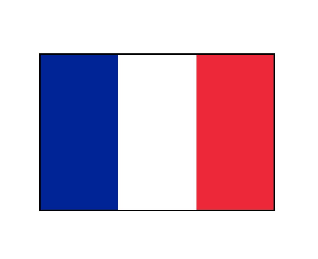 France Ending Sales of Gasoline, Diesel Vehicles by 2040