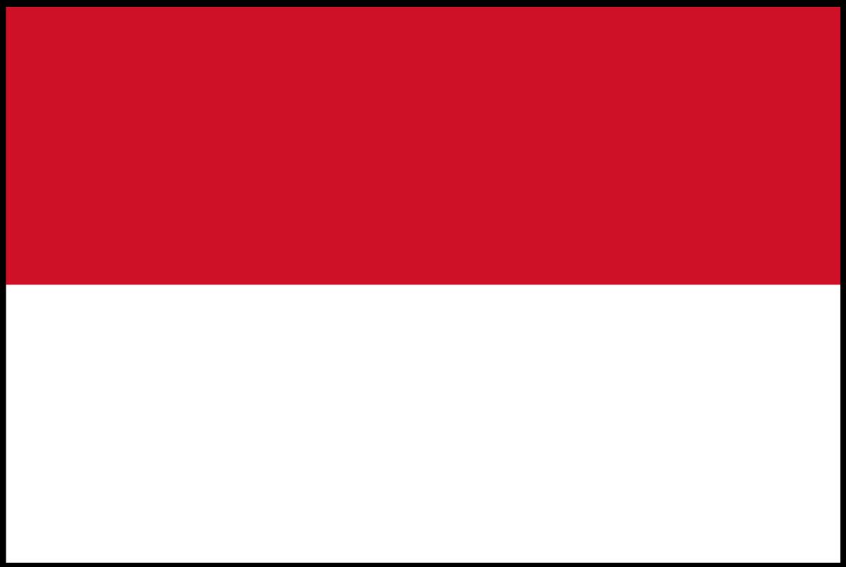 Overview: Indonesian Fleet Market