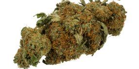 Marijuana Use Still Illegal on Calif. Roads