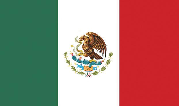 Overview: Mexican Fleet Market