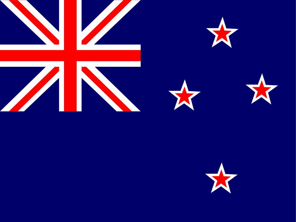 Overview: New Zealand Fleet Market