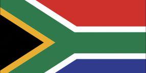 Overview: South African Fleet Market
