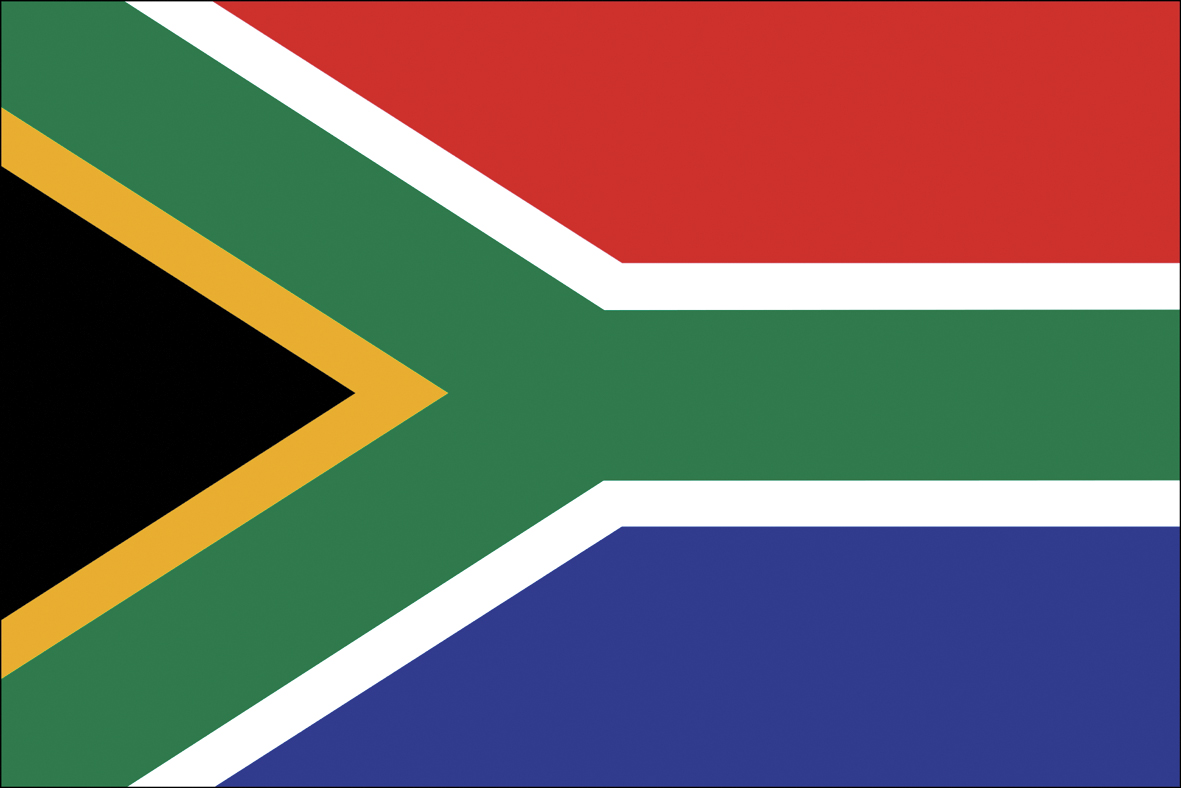 Overview: South African Fleet Market