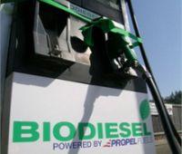 Biodiesel Producers Say Delay in Biofuel Mandate Harms Industry
