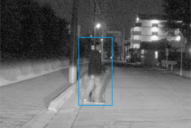 The new Denso standard vision sensor is designed to detect nighttime pedestrians who wouldn't be visible to the naked eye. Photo courtesy of Denso.