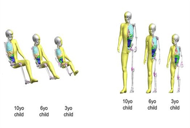 Images of virtual crash dummies courtesy of Toyota.