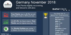 German Fleet Registrations Down in November