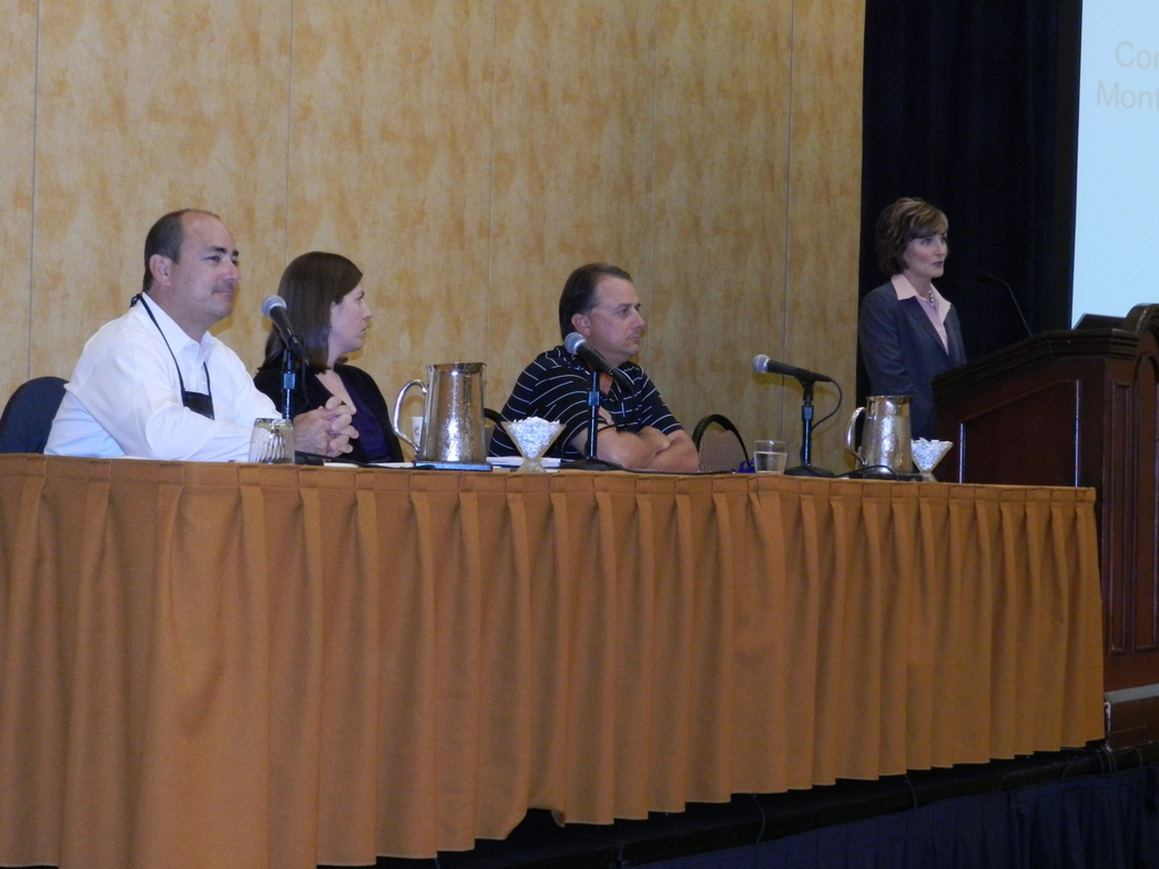 Deb Frodl of GE CApital Fleet Services moderated a panel discussing GE fleet drivers'...