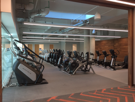 There is a 20,000-square-foot, two-story gym and wellness center for Toyota team members to use...