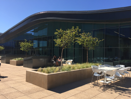 The Sequoia Conference, located inside the TMNA corporate campus, will be the venue for Toyota's...