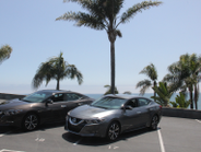 Nissan shows off the new Maximas at the Bel-Air Bay Club.