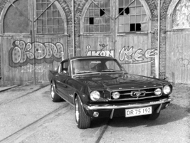 This 1965 Ford Mustang Fastback is nicknamed Stacey. It's owned by Martin Christensen, president...