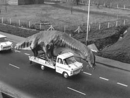 Be mounted by a dinosaur. Model makers in Kent strapped a life-size 49ft-long Cetiosaurus to...