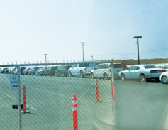 Vehicles of all shapes, sizes and conditions are lined up ready for inspection.