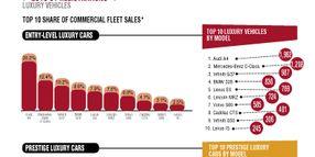 2013-CY Executive Fleet Registrations
