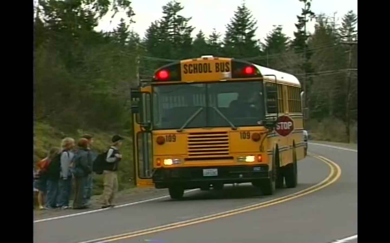 School Bus Stop Rules