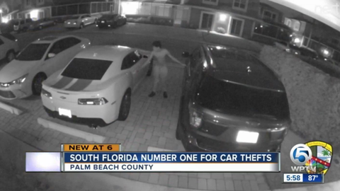 South Florida leads the state in auto thefts for the second year in a row.