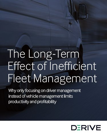 The Long-Term Effect of Inefficient Fleet Management