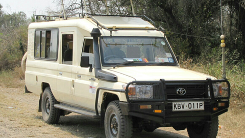 Active Car Hire has a thriving safari tour business, renting Toyota Land Cruisers purpose-built...