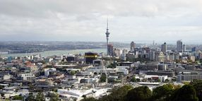 Rental Car Companies Post Record Year for Car Sales in New Zealand