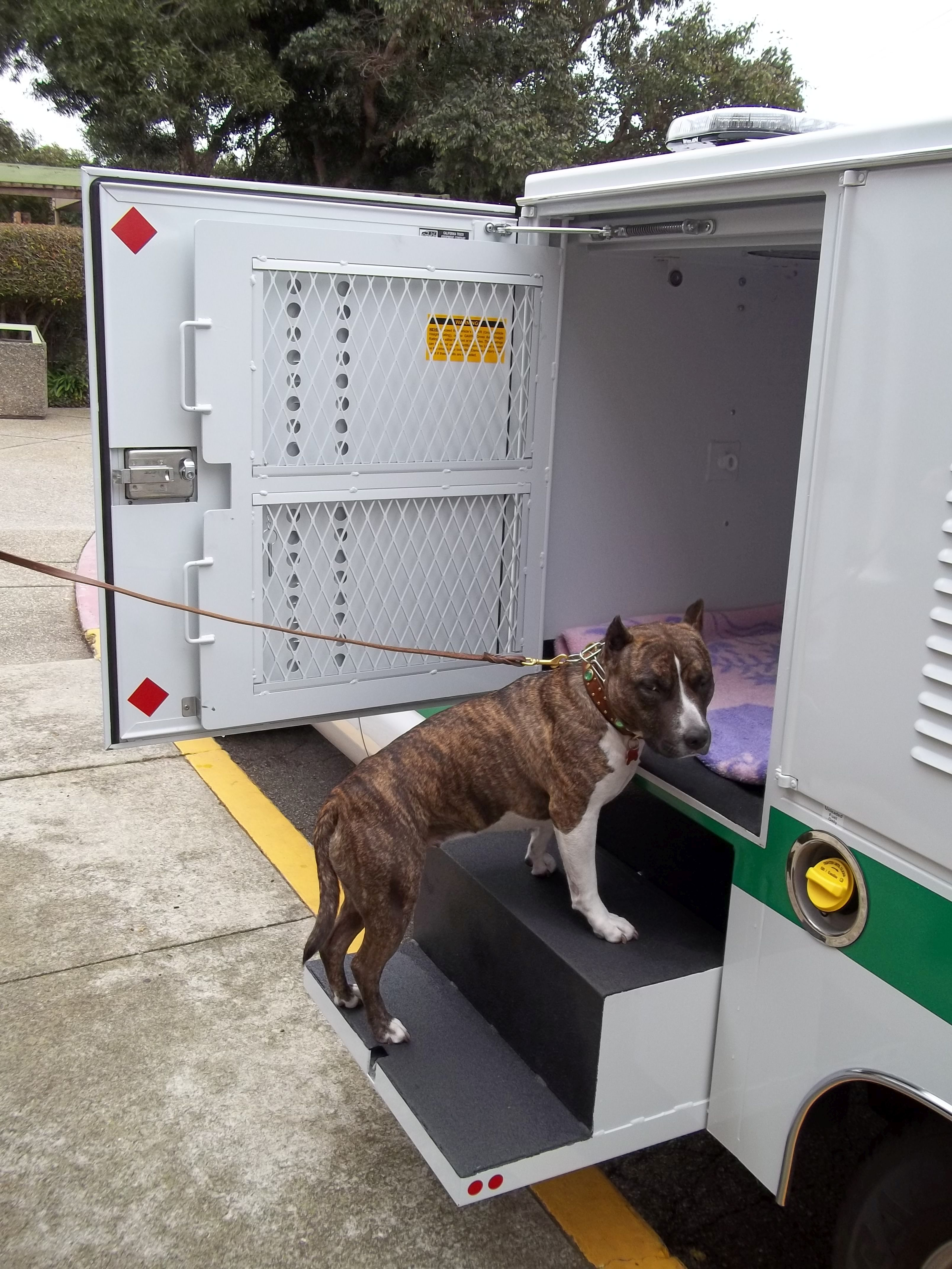 Animal Rescue Fleet Switches Back to Trucks from Vans