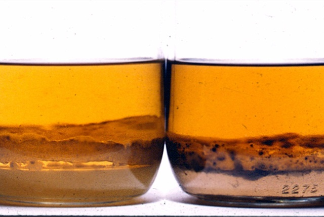 The presence of water or other fluid mixed with diesel fuel is clearly apparent from the stratification shown here.