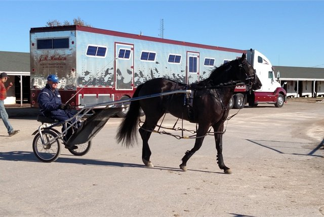 Standardbred racer with sulky and rider trots by a horse van. Harness racing on oval dirt tracks is big in Ohio and other states.